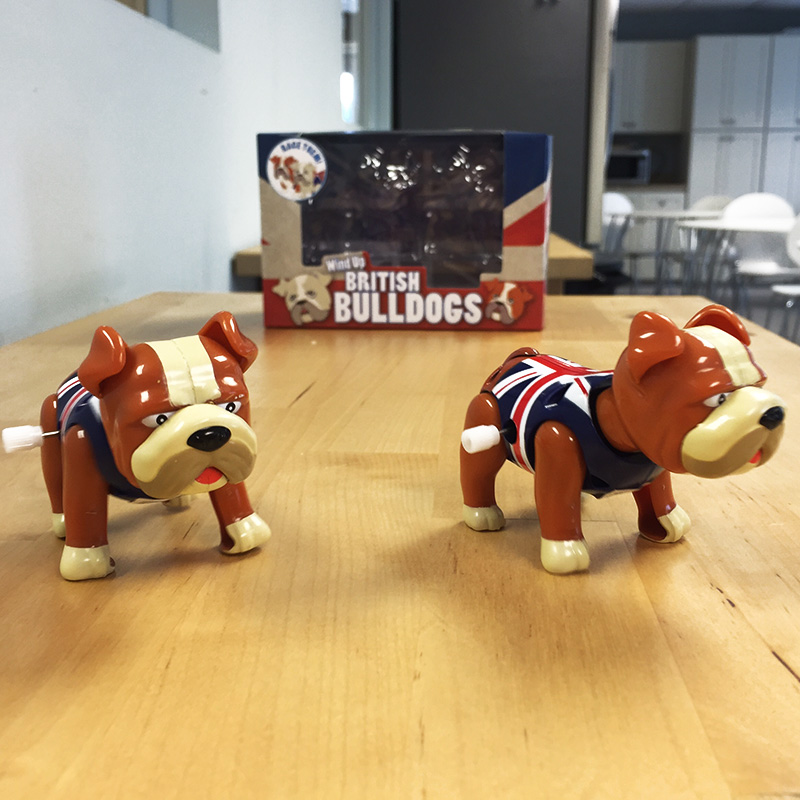 Wind-Up-British-Bulldogs-24599-Ships-Free