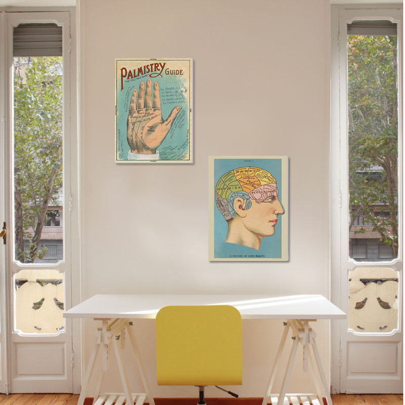 Vintage Phrenology and Palmistry Diagrams - Canvas Set - SHIPS FREE!