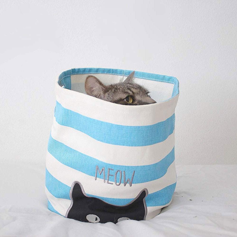 $11.99 (reg $26) Meow Canvas S...