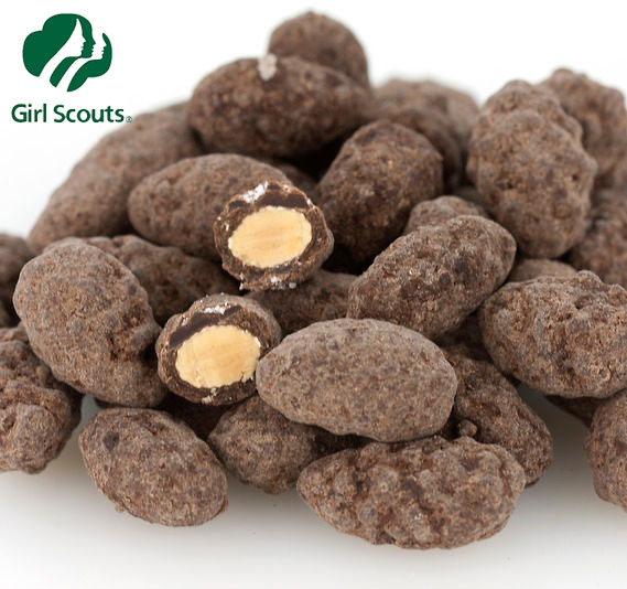 Girl Scouts Dark Chocolate Sea Salt Almonds 12-oz.