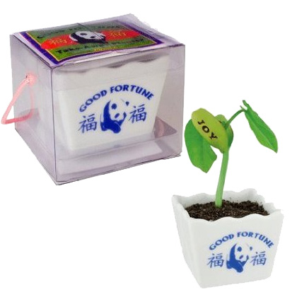 SHIPS FREE! Good Fortune Planter - Grow a Fortune!